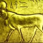 toro, astrologia, astropoesia, zodiaco